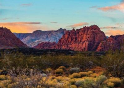 Black Desert Resort